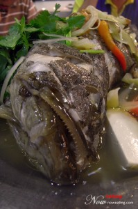 Sea Grouper Hong Kong Delicacies with Teow Chew Style